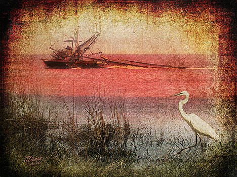 Shrimping 2 by Jim Ziemer