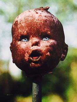 Shrunken Head Scarecrow by Douglas Fromm