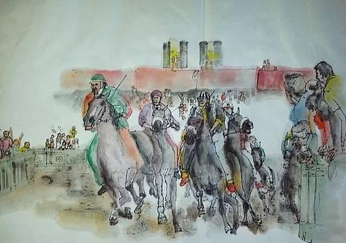 Siena and their Palio album by Debbi Saccomanno Chan