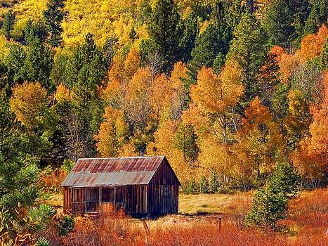 Sierra Solitude by Scott McGuire