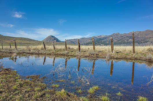Sierra Valley Spring Reflection by Scott McGuire