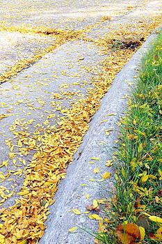Sign of Fall by Selma Glunn