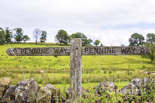 Patricia Hofmeester - Signpost Pennine Way