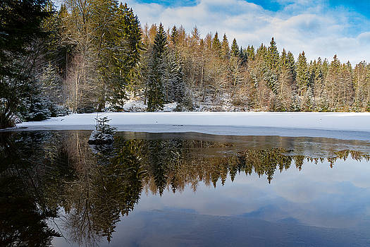 Silberteich, Harz by Andreas Levi