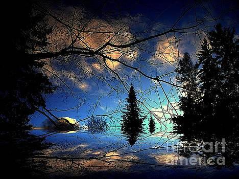 Silent Night by Elfriede Fulda