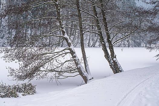 Jenny Rainbow - Silent Winter Morning