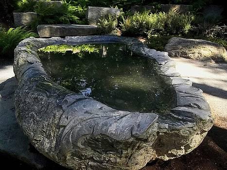 Silvan Faerie Bath by Melissa McCrann
