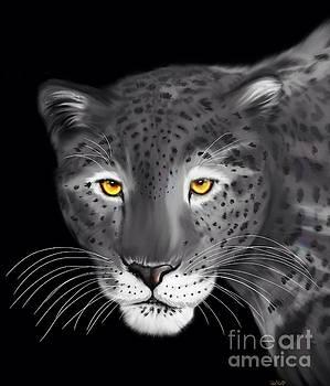 Nick Gustafson - Silver Jaguar