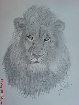Simba by Jaiteg Singh