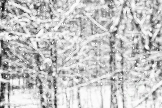 Simply Snowing by Sue OConnor