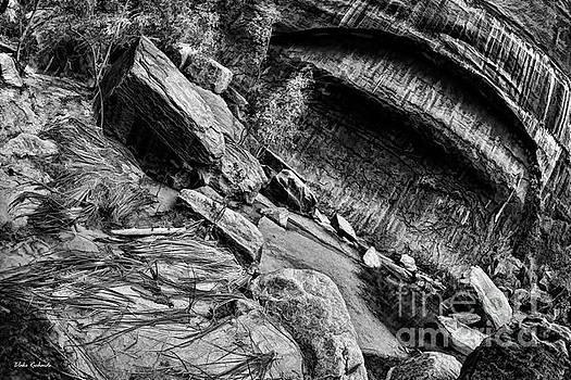 Sinawava Rocks by Blake Richards
