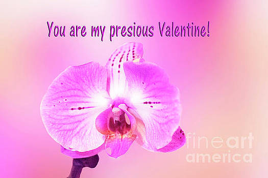 Single Orchid Valentine by Linda Phelps