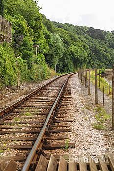 Patricia Hofmeester - Single railway track