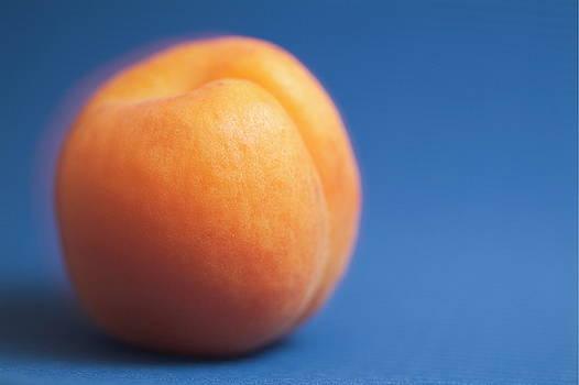 Sami Sarkis - Single ripe apricot ready to eat