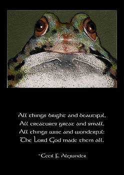 Joyce Geleynse - Sir Frog