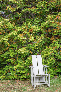 Sit for a Spell by A New Focus Photography