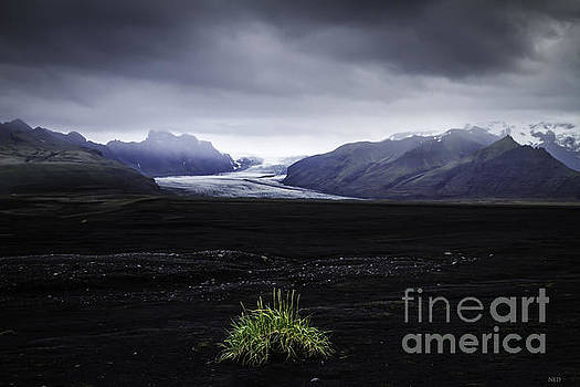 Skaftafellsjokull Glacier by Nancy Dempsey