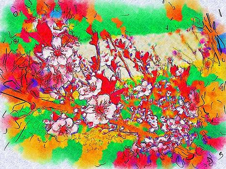 Sketch Drawing of Sandcherry Abstract by Skyler Tipton