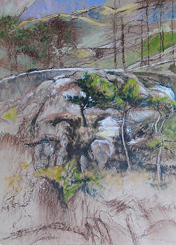 Harry Robertson - Sketch for Ogwen painting 2