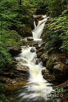 Skinny Dip Falls by Debbie Green