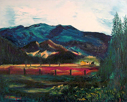 Skokomish Valley by Richard Beauregard