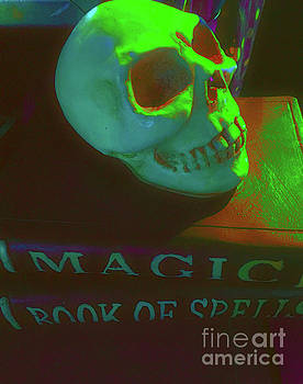 Skull and Spells by Todd Breitling
