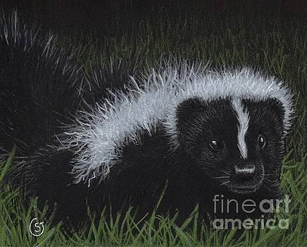 Skunk in the Grass by Sherry Goeben