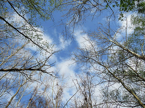 Sky above by Azthet Photography