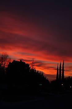 Sky Fire by Ellen Young
