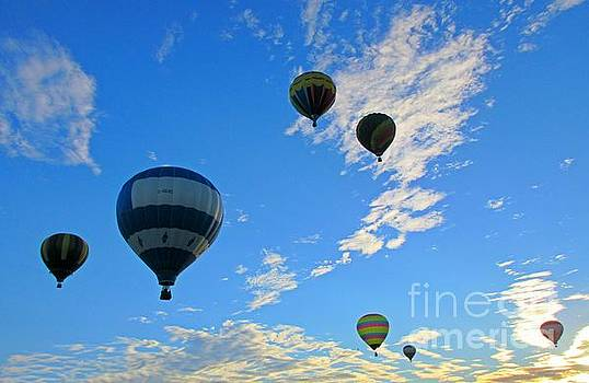 Sky Full of Hot Air Balloons During Balloon Festival by John Malone