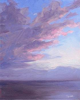 Sky Gray by Irene Pruitt