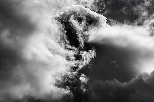 Steven Poulton - Sky Life Clouds