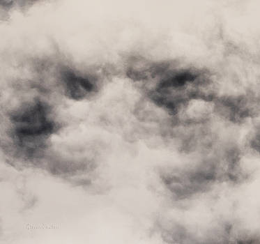 Steven Poulton - Sky Life Eyes