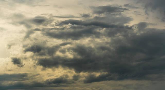 Steven Poulton - Sky Life Some Have Blue Eyes