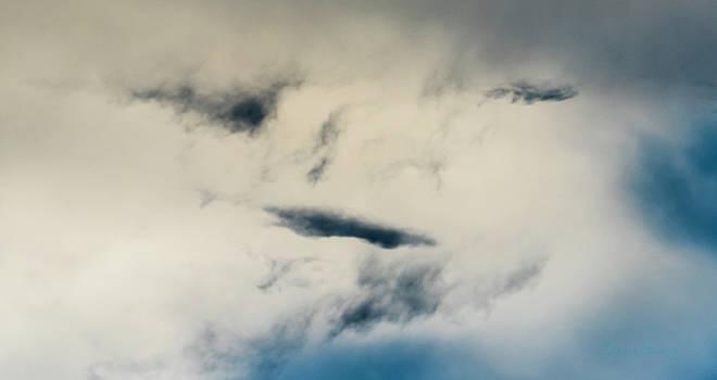 Steven Poulton - Sky Life Study