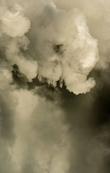 Steven Poulton - Elephant in the Rain