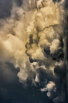 Steven Poulton - Sky Life. When The Eyes Relax The Visions Start