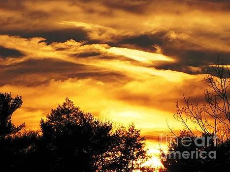 Sky Study 7 3/11/16 by Melissa Stoudt