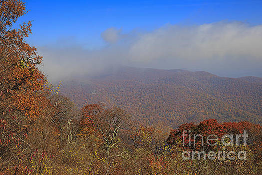 Skyline Drive viewpoint at Thorofare Mountain Overlook by Louise Heusinkveld