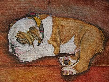 Sleeping Bully by Pam Utton