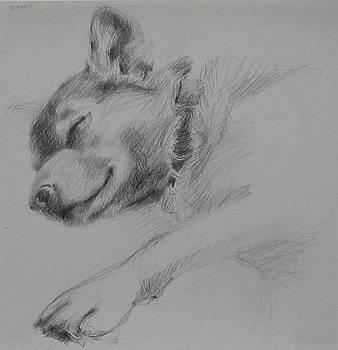 Sleeping Dog I by Jackie Hoats Shields