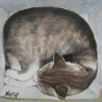 Jindra Noewi - Sleeping Kitty