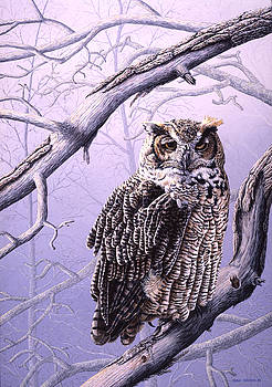 Sleepy Hunter - Great Horned Owl by Craig Carlson