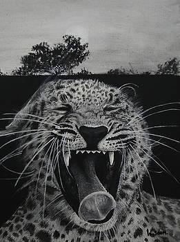 Sleepy Leopard by Tylir Wisdom