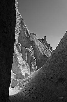 David Gordon - Slot Canyon BW I