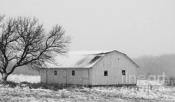 Small Barn in White by J L Zarek