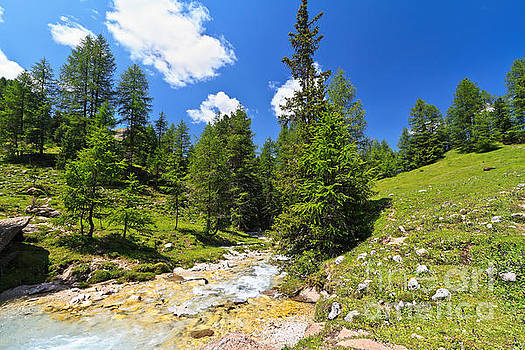 small stream in Contrin Valley by Antonio Scarpi