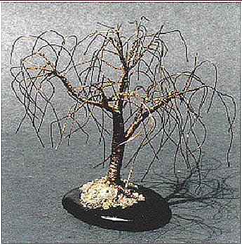 Small Willow - Wire tree Sculpture  by Sal Villano