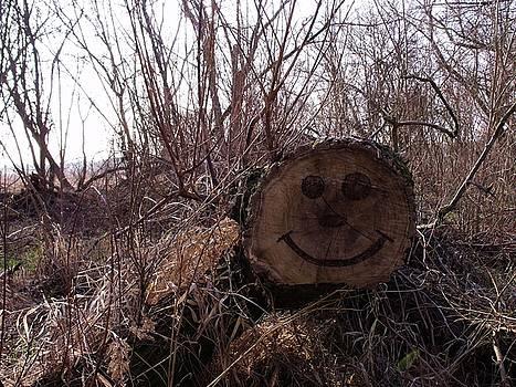 Smiley Log by Anna Villarreal Garbis