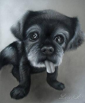 Smokey by Alaina Ferguson